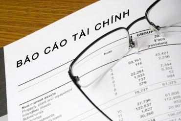 Báo cáo tài chính năm 2015 của Công ty mẹ Tổng Công ty