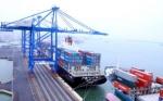 WB dự báo kinh tế Việt Nam tăng 6,2% năm 2015