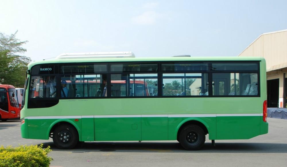 DSC 0803 Copy